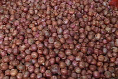 India bans exports of onion seeds