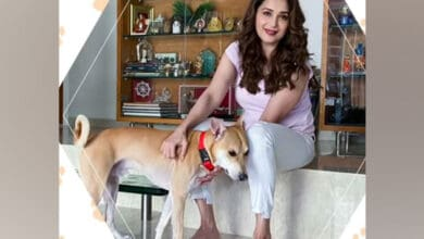 Photo of Madhuri Dixit urges love, affection and respect for animals