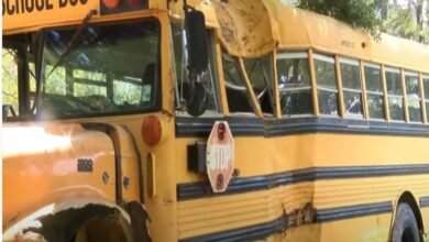 Photo of 11-year-old Louisiana boy steals school bus; crashes it in a chase