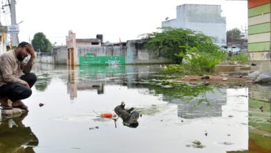 Photo of Hyderabad Flood: Jalpally houses are still inundated in water