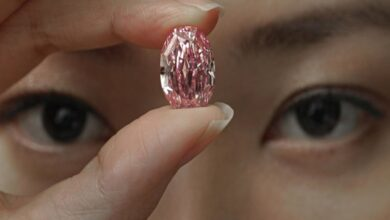 Photo of World's largest vivid pink diamond to be auctioned on Nov 11