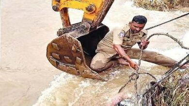 Photo of Police retrieves another dead body from city outskirts