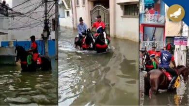 Photo of Hyderabad rains: Men on horseback jump into relief work