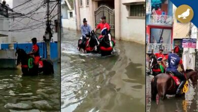 Photo of Hyderabad horse riding society carries out rescue operations