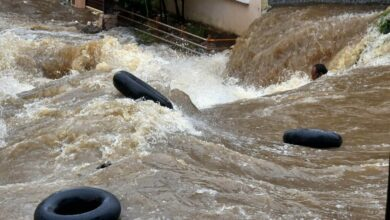 Photo of Hyderabad rains:Recovery of dead bodies continues, 18 fished out