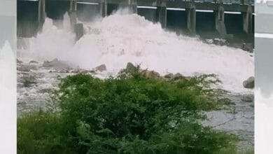 Photo of Nizamsagar reservoir receive good inflowd due to continuous rains
