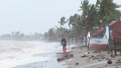 Photo of Philippines: 16 dead, thousands of homes damaged in typhoon