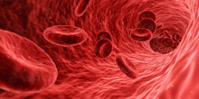 Covid virus may block formation of key red blood cells
