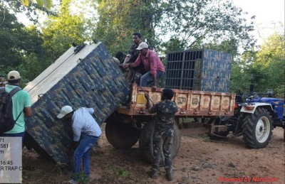 Telangana forms panel to deal with tiger that killed a man