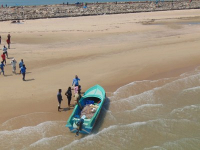 Waste fishing gear threatens Ganges wildlife: Study