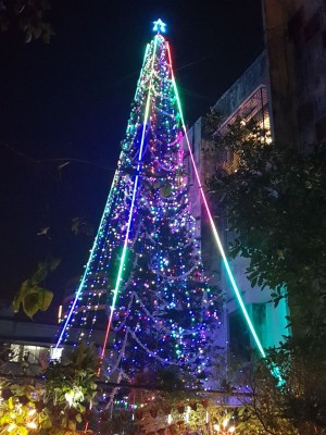 Covid curbs for X'mas, New Year revelry in Bengaluru
