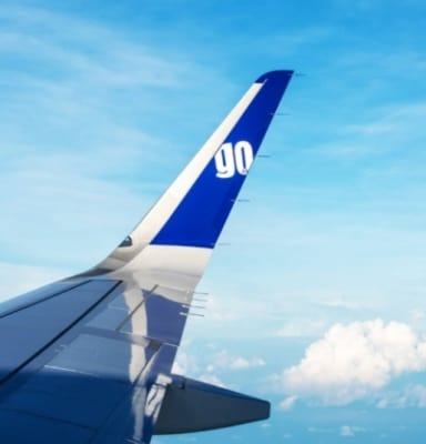 GoAir cargo fight carries passengers, DGCA launches probe