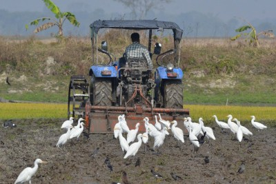 ICAR's IISS conferred King Bhumibol World Soil Day 2020 Award