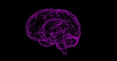 Pacman like game reveals origin of emotions in brain