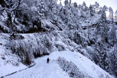 Shimla gets season's first snowfall