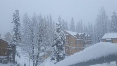 Fog in Jammu, light snowfall in Kashmir Valley