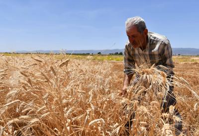 UN humanitarian chief voices concern over Syrian economic crisis