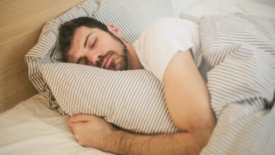 How the brain paralyses you while you sleep