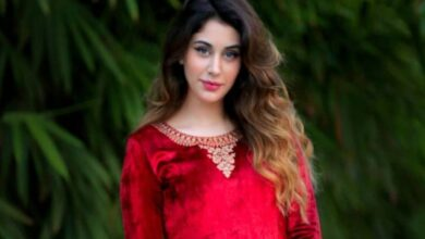 Loveyatri actress Warina Hussain enters Tollywood, set to fly Hyderabad soon