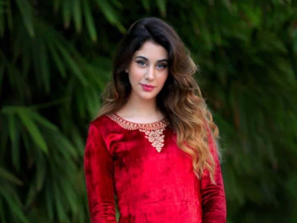 Loveyatri actress Warina Hussain enters Tollywood, set to fly Hyderabad soon