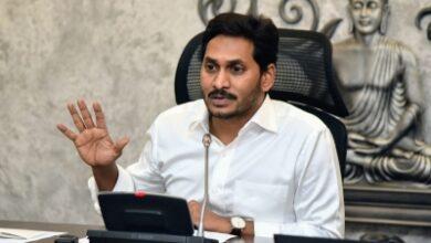Andhra writes to Centre to affiliate Sri Venkateswara college to AU