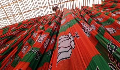 BJP's Mokariya, Prajapati elected unopposed to RS from Gujarat
