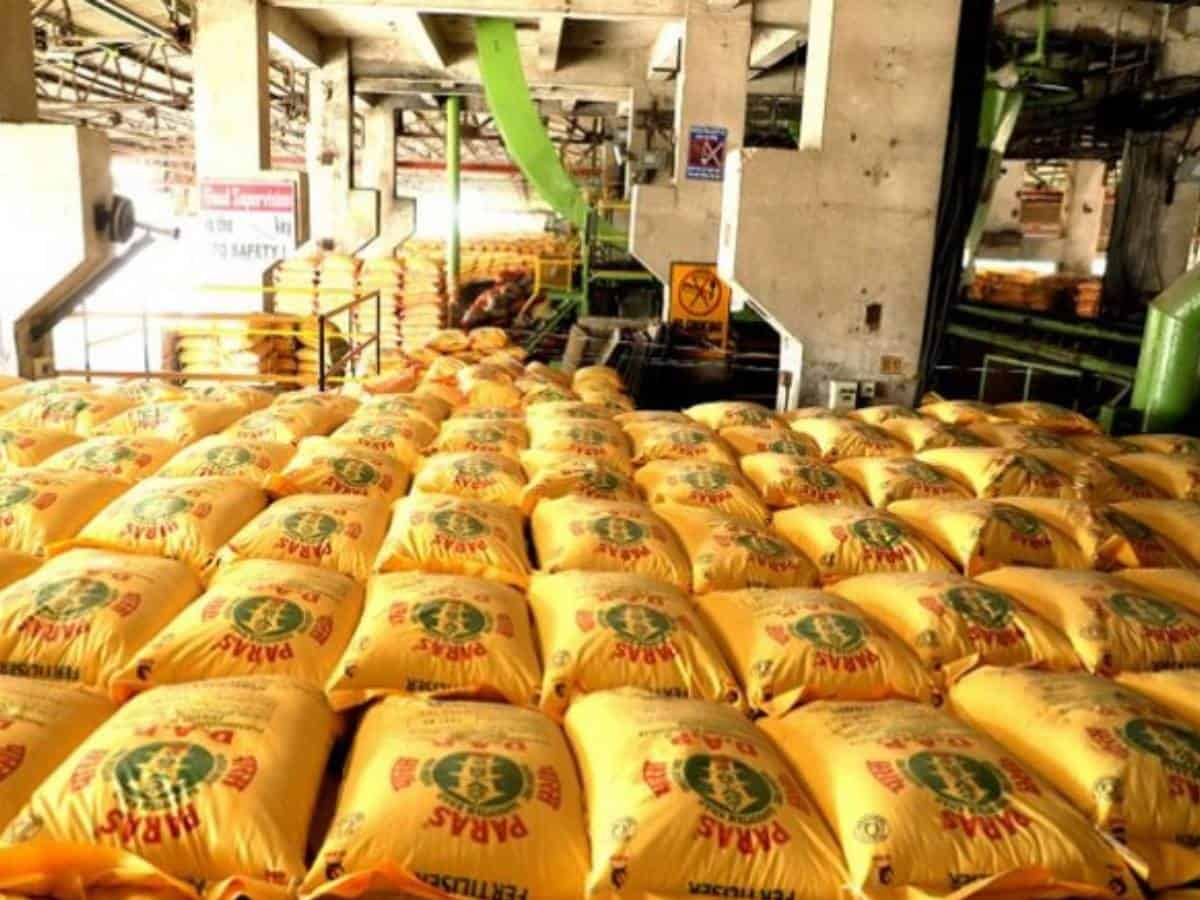 Additional Budget allocation to wipe out fertiliser subsidy backlog: Ind-Ra