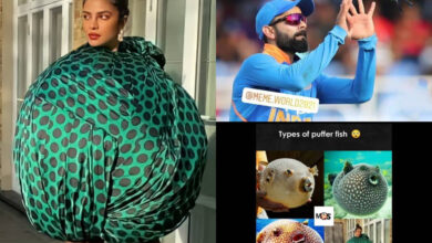 Priyanka Chopra's bizarre look sparks hilarious meme fest, don's miss the best one!