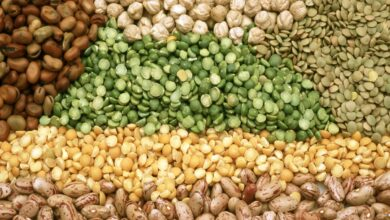 Hyderabad: Prices of pulses, edible oil to go up in coming days