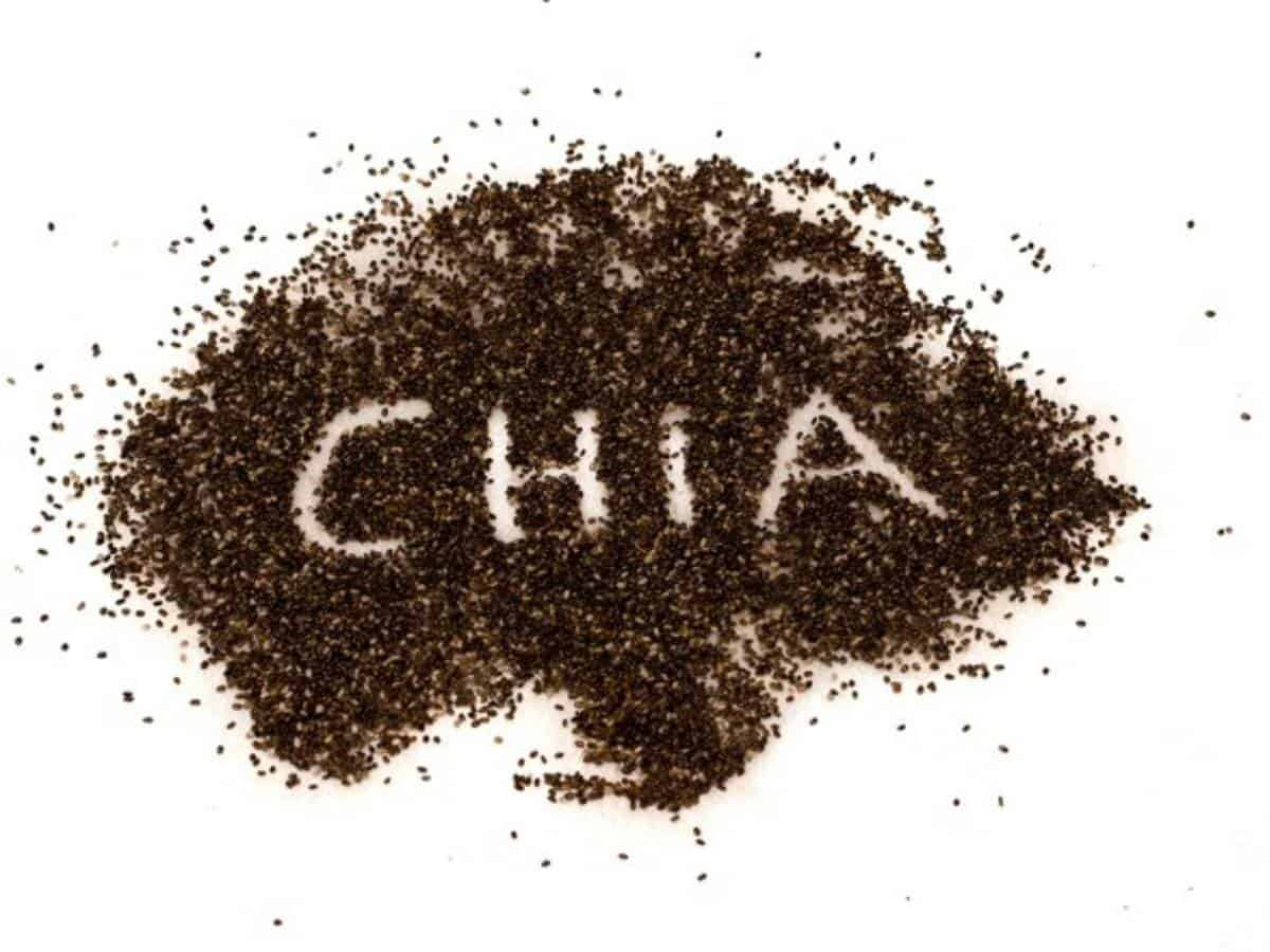 Chia seeds may provide options for nutritional foods, capsules