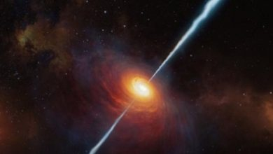 Indian astronomers trace rare supernova explosion to WR stars