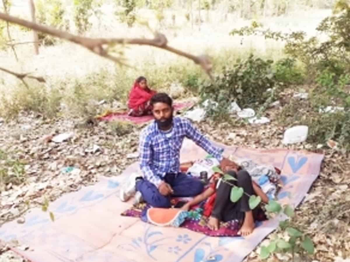 COVID-19 patients make beeline for Peepal tree in UP district