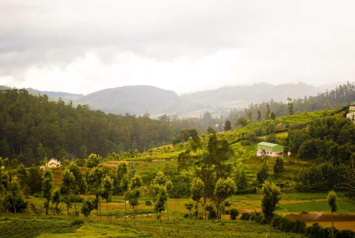 E-pass must for tourists from Kerala, Karnataka to enter Tamil Nadu's Nilgiris district